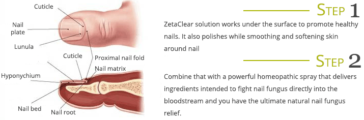 How ZetaClear works